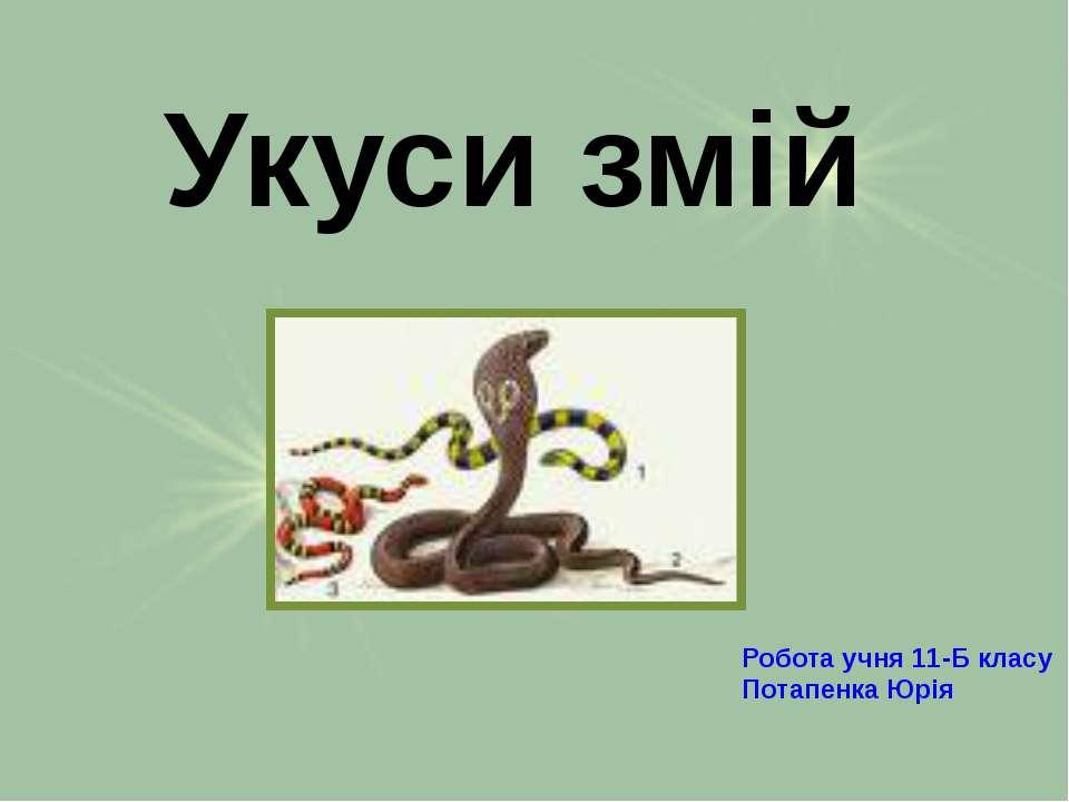 Укуси змій Робота учня 11-Б класу Потапенка Юрія