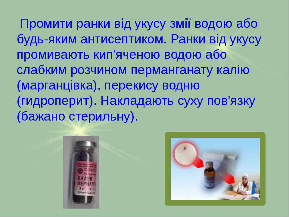 Промити ранки від укусу змії водою або будь-яким антисептиком. Ранки від укус...