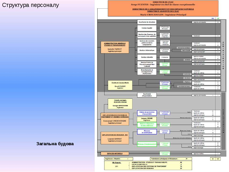 Структура персоналу Загальна будова