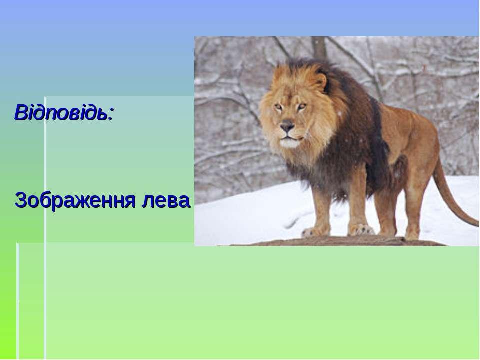 Відповідь: Зображення лева