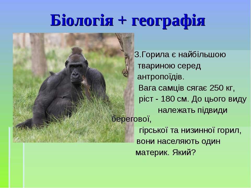 Біологія + географія 3.Горила є найбільшою твариною серед антропоїдів. Вага с...