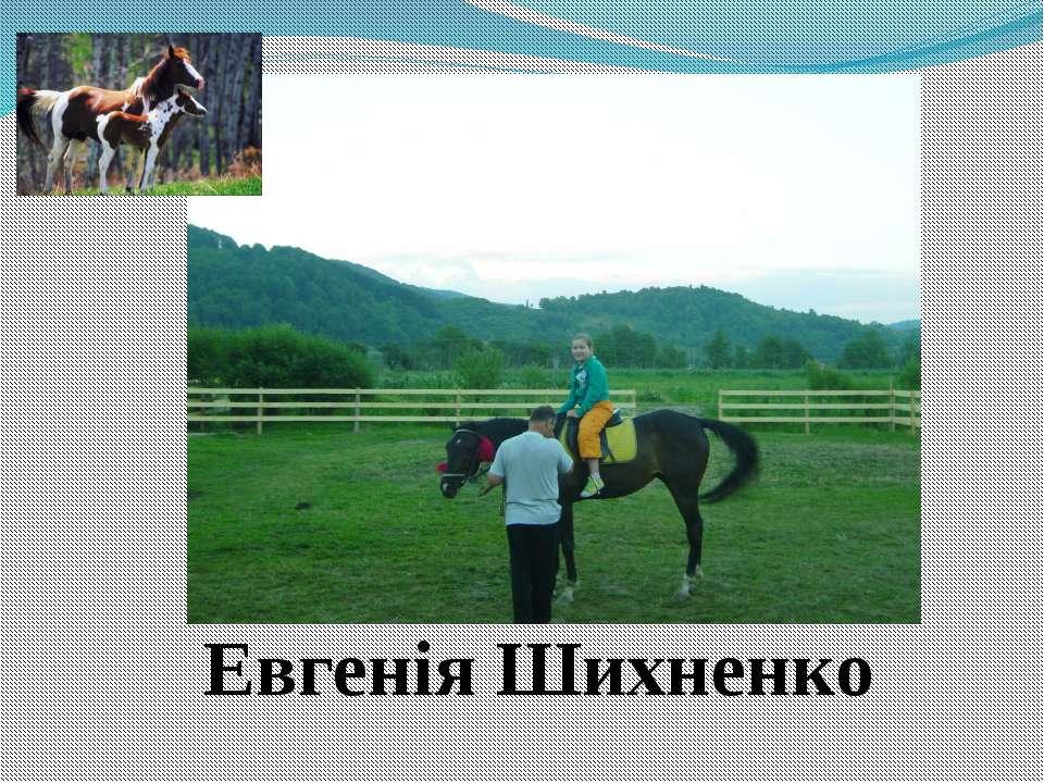 Евгенія Шихненко