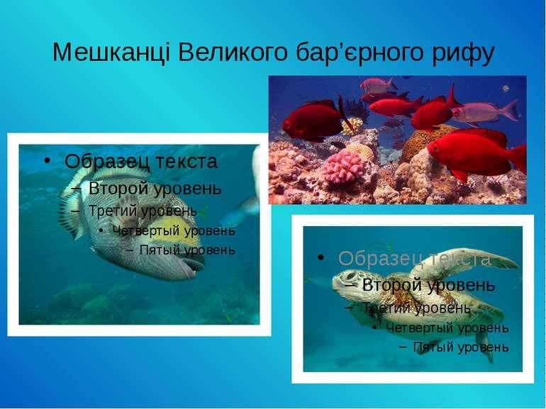 Мешканці Великого бар'єрного рифу