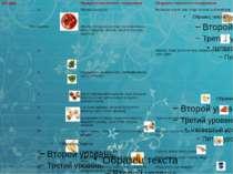 Сучасна класифікація вітамінів. Вітамін В1 тіамін антиневритическийвітамін, а...