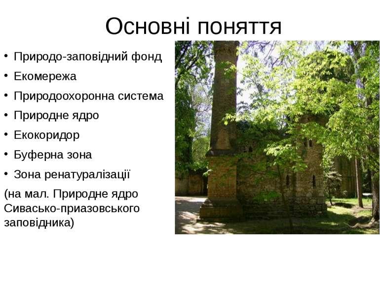 Основні поняття Природо-заповідний фонд Екомережа Природоохоронна система При...