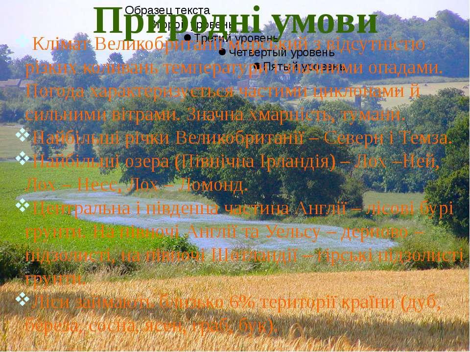 Природні ресурси Камяновугільні басейни: Йоркширський, Нортумберлендсько-Даре...