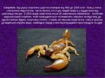 Скорпіон. Від укусу скорпіона щорічно помирає від 800 до 2000 осіб - більш то...