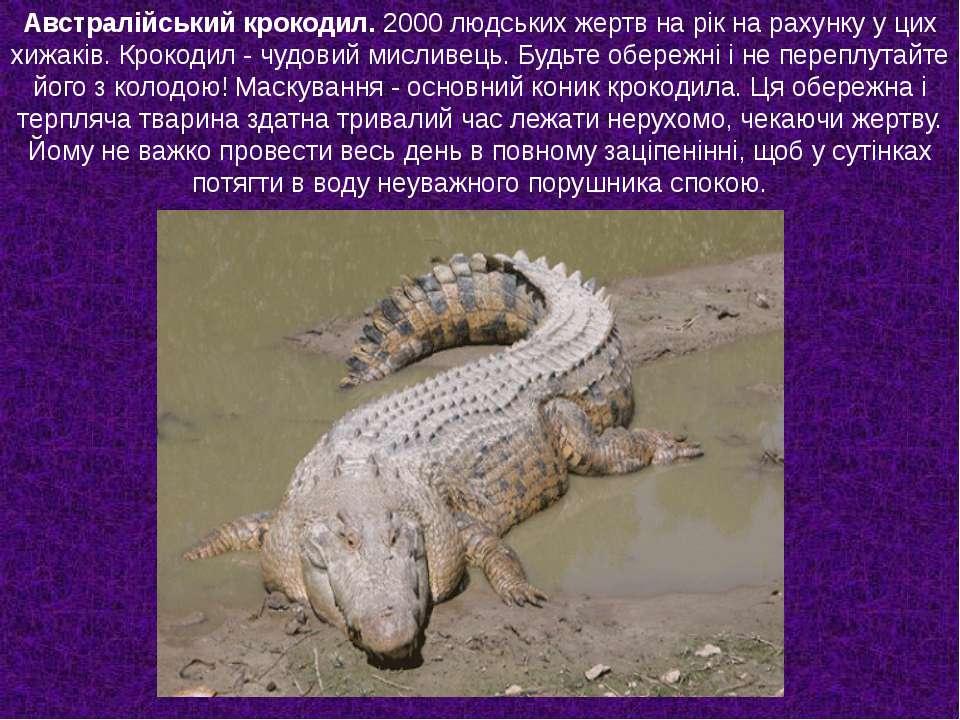 Австралійський крокодил. 2000 людських жертв на рік на рахунку у цих хижаків....