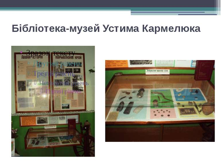 Бібліотека-музей Устима Кармелюка
