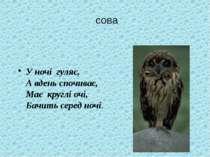 У ночі гуляє, А вдень спочиває, Має круглі очі, Бачить серед ночі. сова