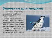Значення для людини У останні десятиліття численні наукові бази в Антарктиці ...