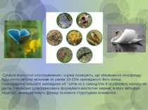 Сучасні екологічні спостереження і оцінки показують, що збереження генофонду ...