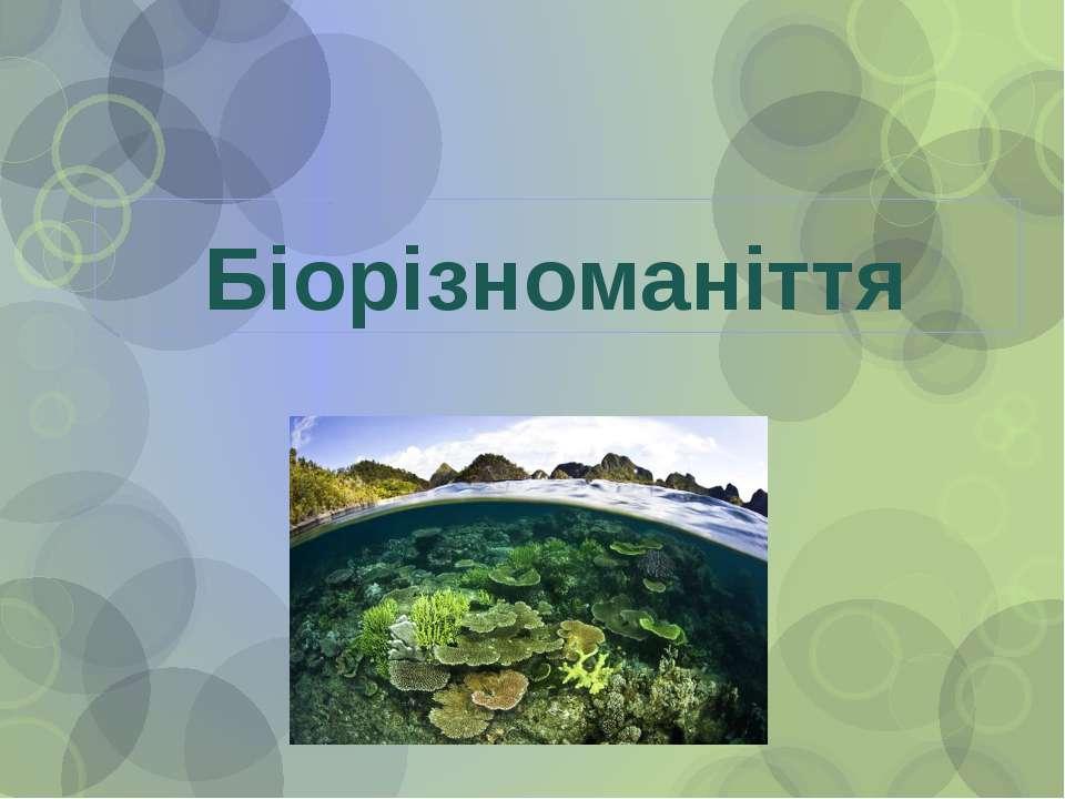 Біорізноманіття