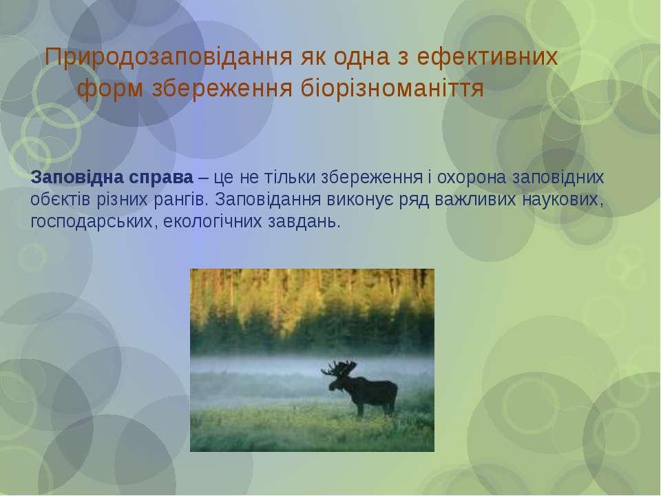 Природозаповідання як одна з ефективних форм збереження біорізноманіття Запов...