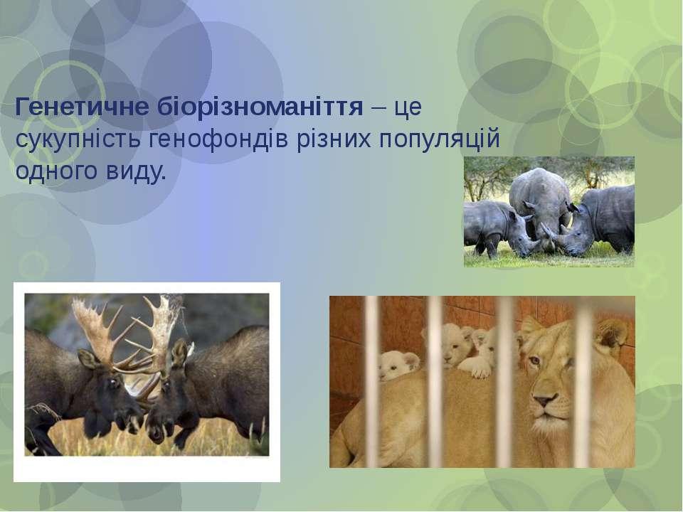 Генетичне біорізноманіття – це сукупність генофондів різних популяцій одного ...
