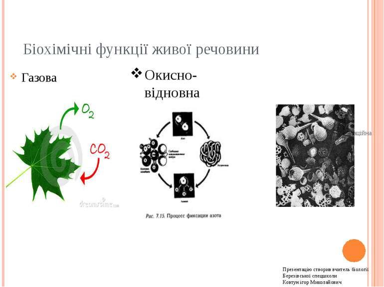 Біохімічні функції живої речовини Газова Концентраційна Окисно-відновна Презе...