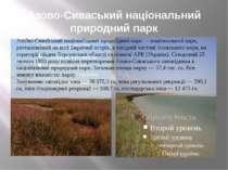 Азово-Сиваський національний природний парк Азо во-Сива ський націона льний п...
