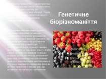 Генетичне біорізноманіття Генетичне різноманіття — характеристика біорізноман...