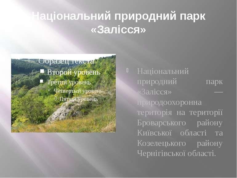 Національний природний парк «Залісся» Національний природний парк «Залісся» —...