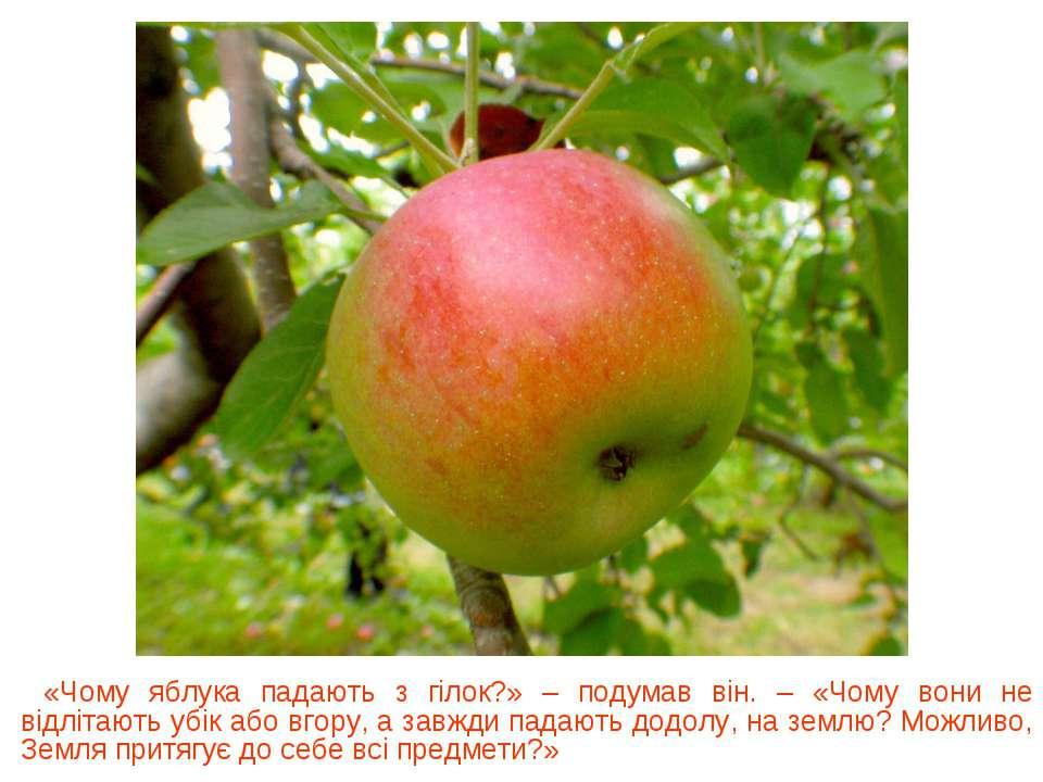 «Чому яблука падають з гілок?» – подумав він. – «Чому вони не відлітають убік...