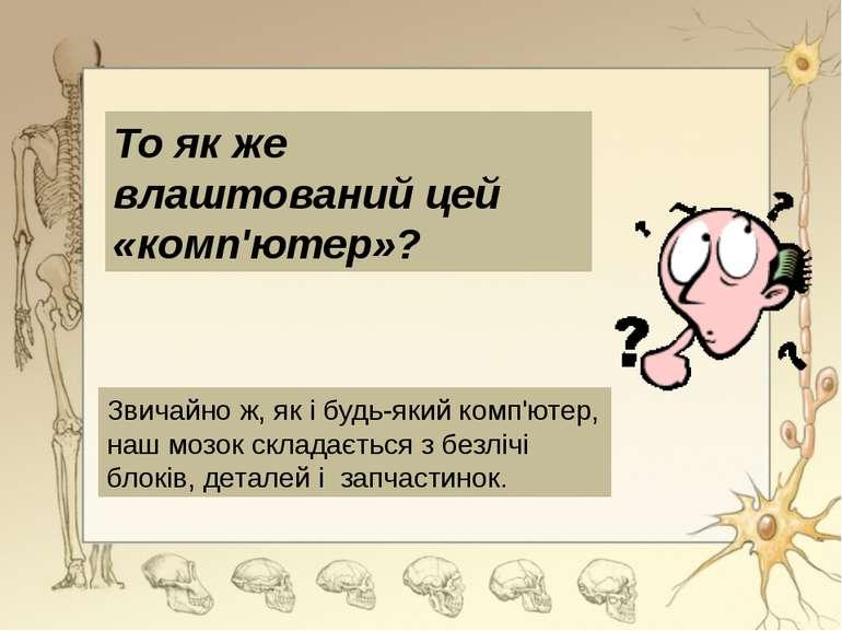Великі півкулі головного мозку -вищий відділ головного мозку Передній мозок р...