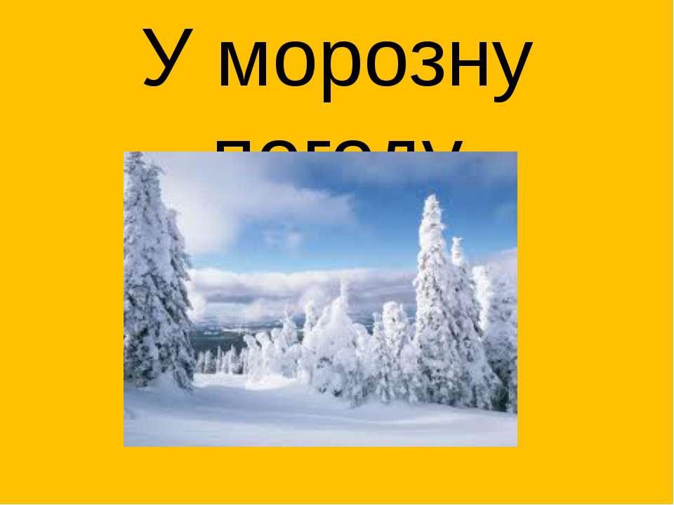 У морозну погоду