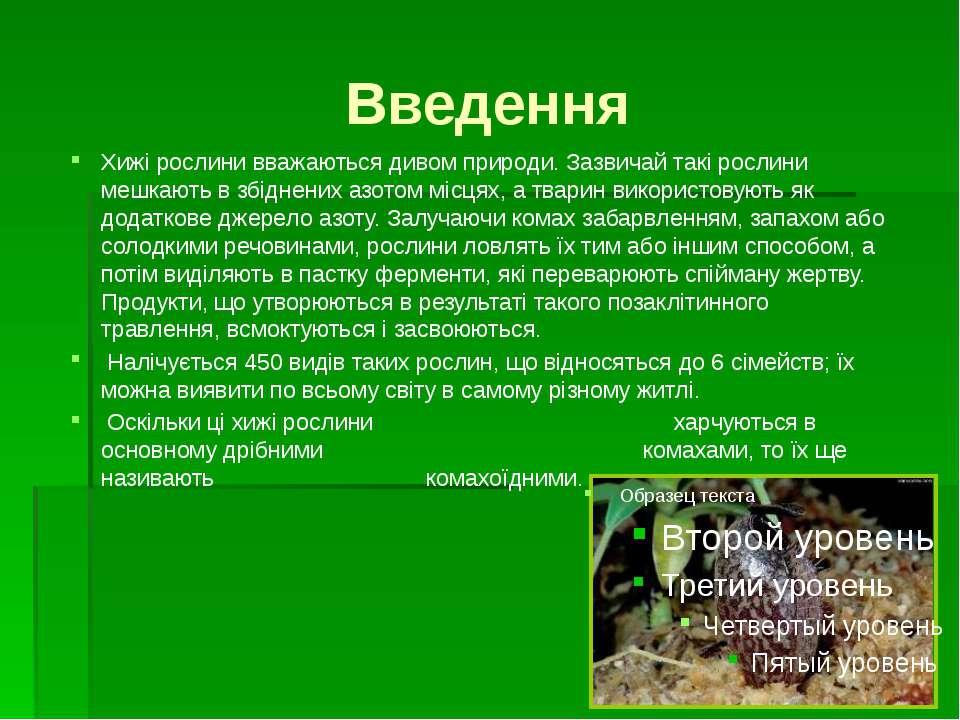 Пастки - рачевни Ловецьке листя рослини має короткий черешок, розділений на д...