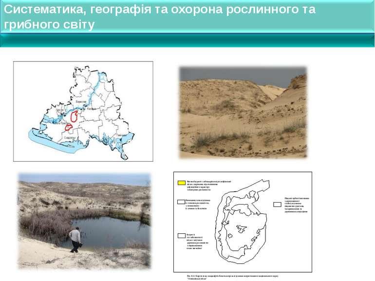 Систематика, географія та охорона рослинного та грибного світу