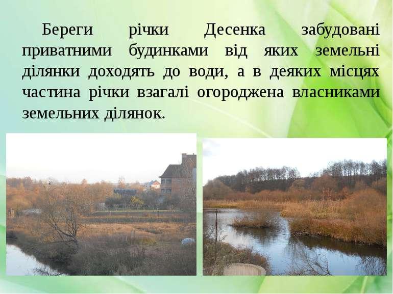 Береги річки Десенка забудовані приватними будинками від яких земельні ділянк...