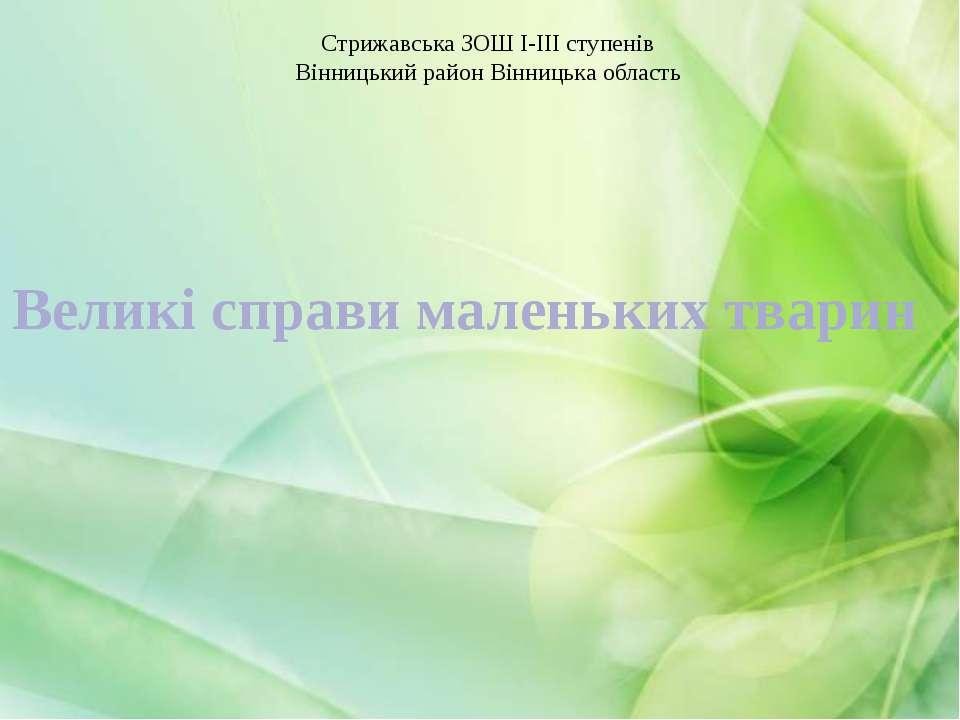 Великі справи маленьких тварин Стрижавська ЗОШ І-ІІІ ступенів Вінницький райо...