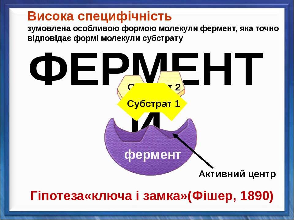 Активний центр Гіпотеза«ключа і замка»(Фішер, 1890) Висока специфічність зумо...
