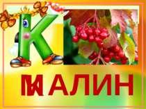 АЛИНА М К