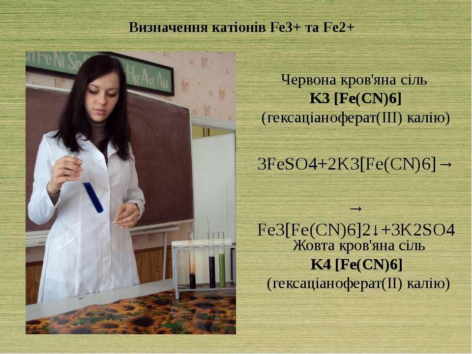 Визначення катіонів Fe3+ та Fe2+ Червона кров'яна сіль K3 [Fe(CN)6] (гексаціа...