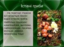 Їстівні гриби На території України зустрічається безліч видів їстівних грибів...