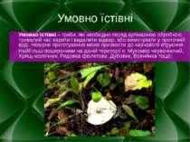 Умовно їстівні Умовно їстівні – гриби, які необхідно перед кулінарною обробко...