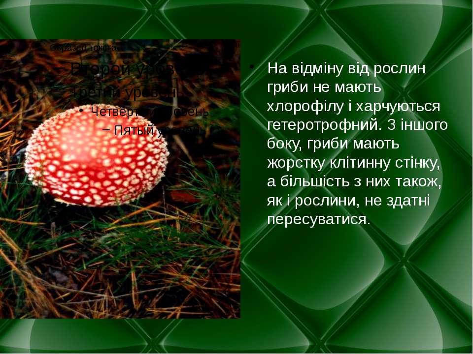 На відміну від рослин гриби не мають хлорофілу і харчуються гетеротрофний. З ...