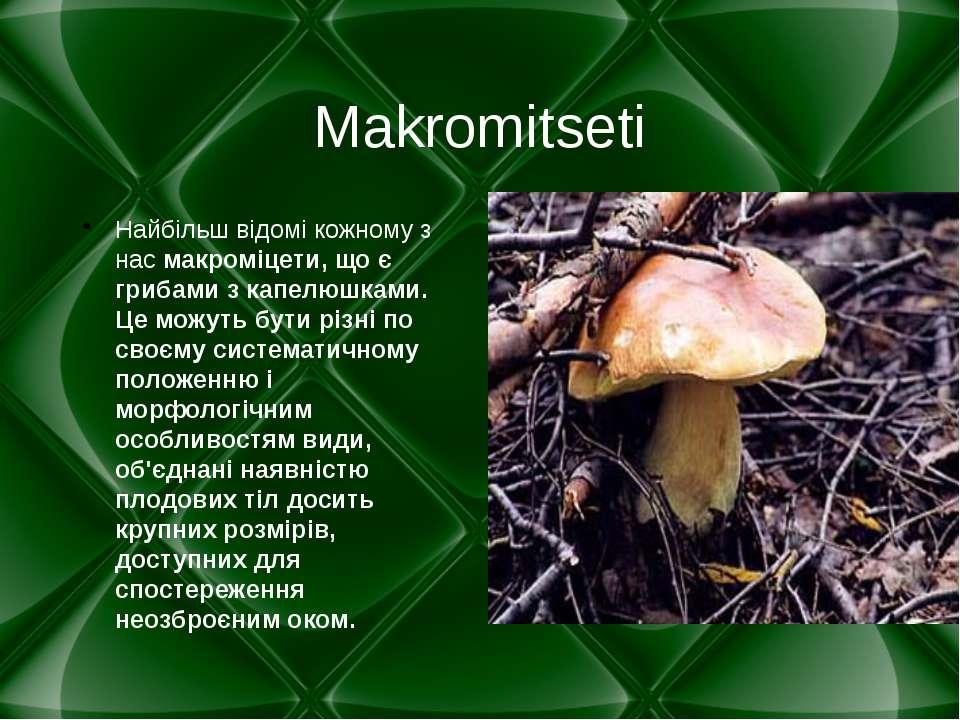 Makromitseti Найбільш відомі кожному з нас макроміцети, що є грибами з капелю...