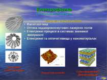 Електрофізика (загальноосвітня кафедра) Напрямки наукової роботи: Магнітоопти...