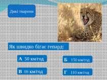 Найбільша тварина в світі: А Слон Б Кит В Кіт Г Буйвол Дикі тварини