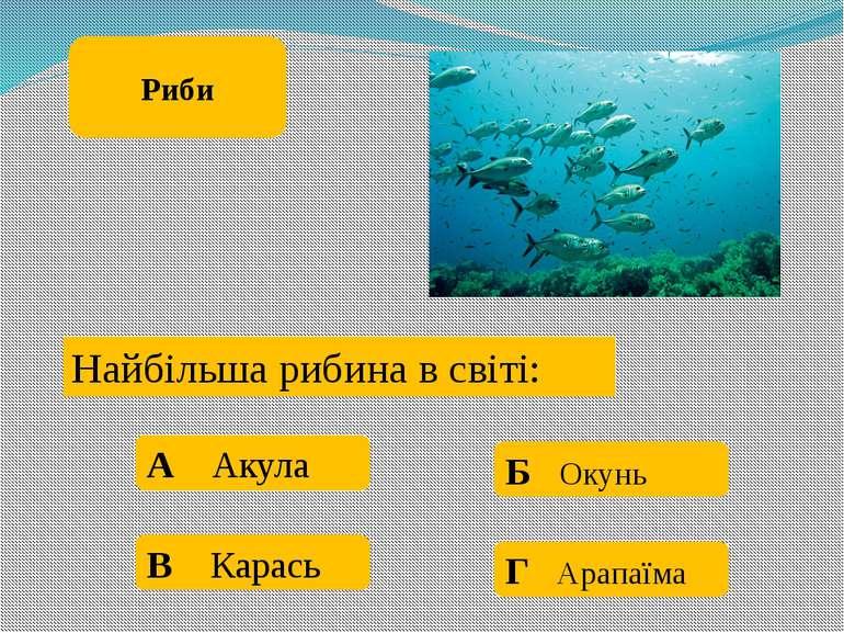 Чим ловлять рибу: А Відром Б Шваброю В Вудкою Г Ящиком Риби