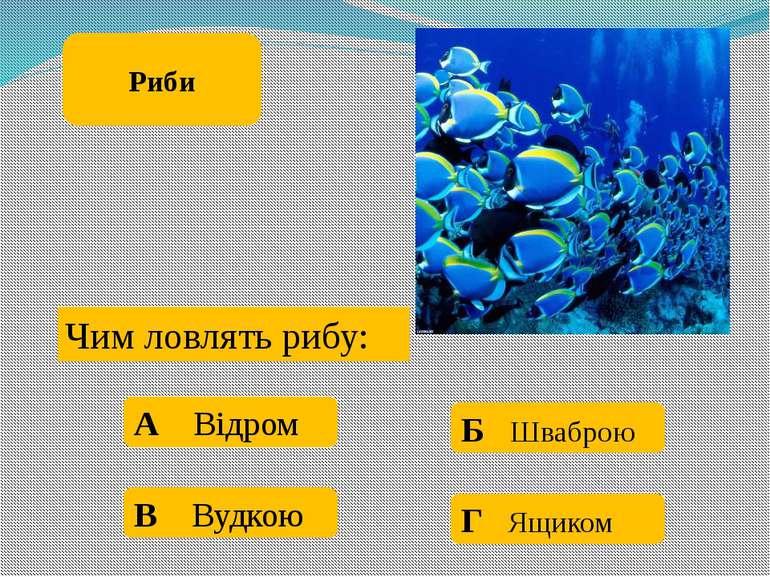 Дельфін це риба: А Так Б Ні Риби
