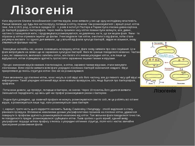 Лізогенія Коли вірусологи ближче познайомилися з життям вірусів, вони виявили...