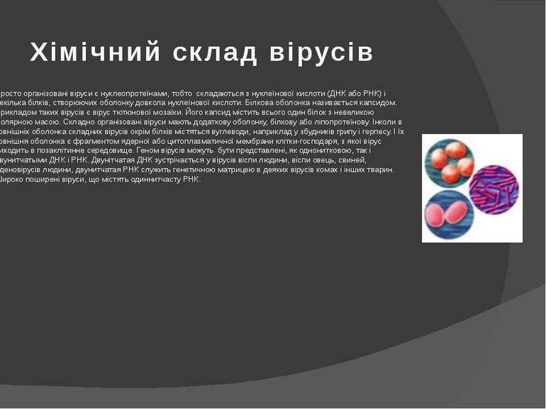 Хімічний склад вірусів Просто організовані віруси є нуклеопротеїнами, тобто с...