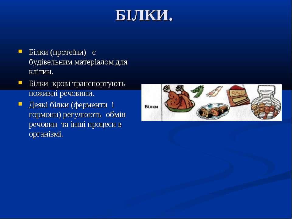 БІЛКИ. Білки (протеїни) є будівельним матеріалом для клітин. Білки крові тран...