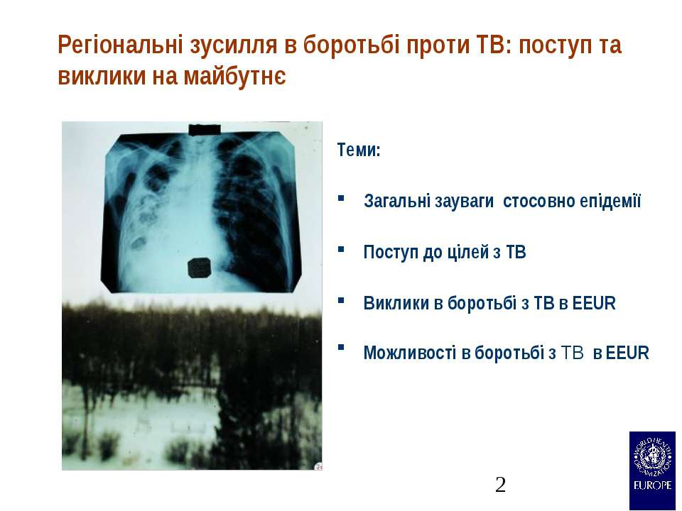 Регіональні зусилля в боротьбі проти TB: поступ та виклики на майбутнє Теми: ...