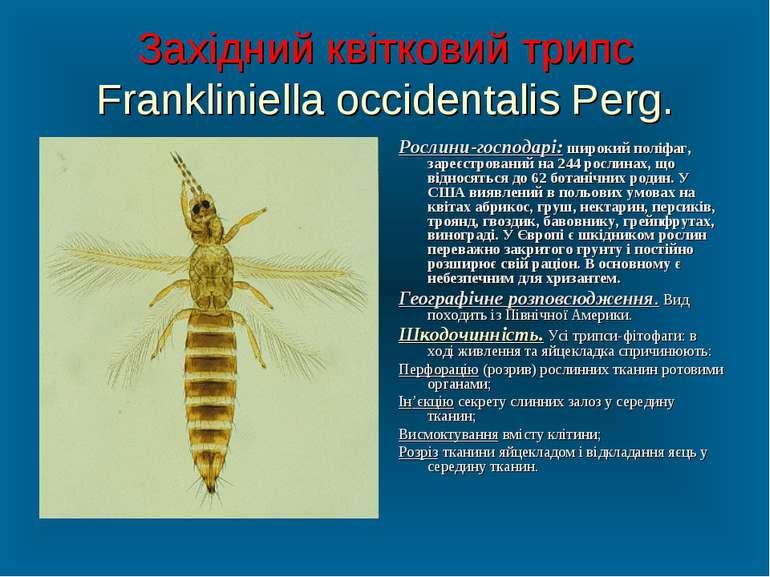 Західний квітковий трипс Frankliniella occidentalis Perg. Рослини-господарі: ...