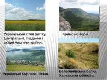 Український степ улітку. Центральні, південні і східні частини країни. Кримсь...
