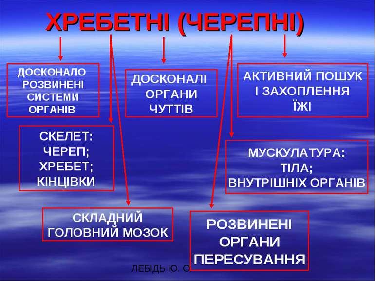 ХРЕБЕТНІ (ЧЕРЕПНІ) ДОСКОНАЛО РОЗВИНЕНІ СИСТЕМИ ОРГАНІВ ДОСКОНАЛІ ОРГАНИ ЧУТТІ...