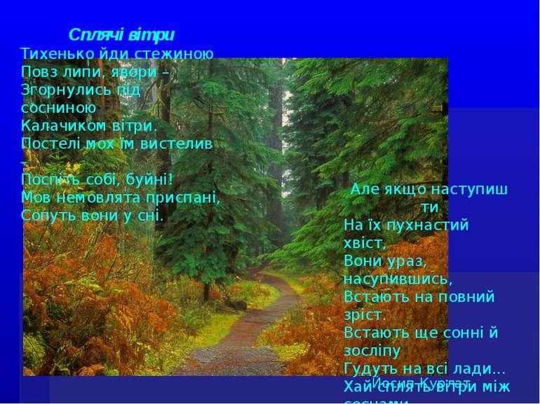Сплячі вітри Тихенько йди стежиною Повз липи, явори – Згорнулись під сосниною...