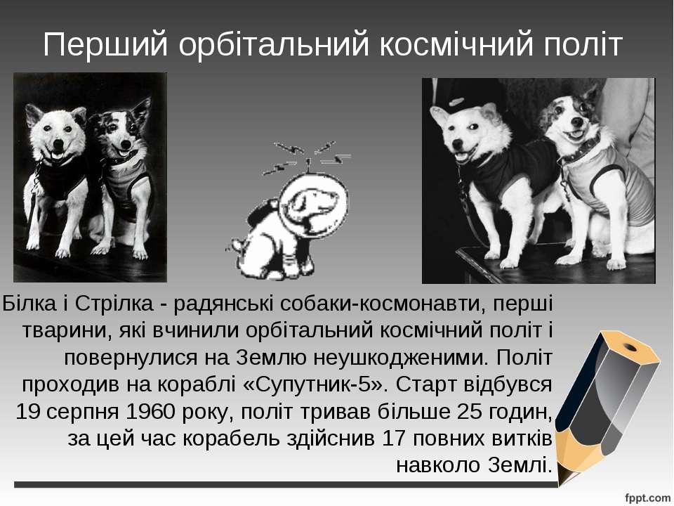 Перший орбітальний космічний політ Білка і Стрілка - радянські собаки-космона...